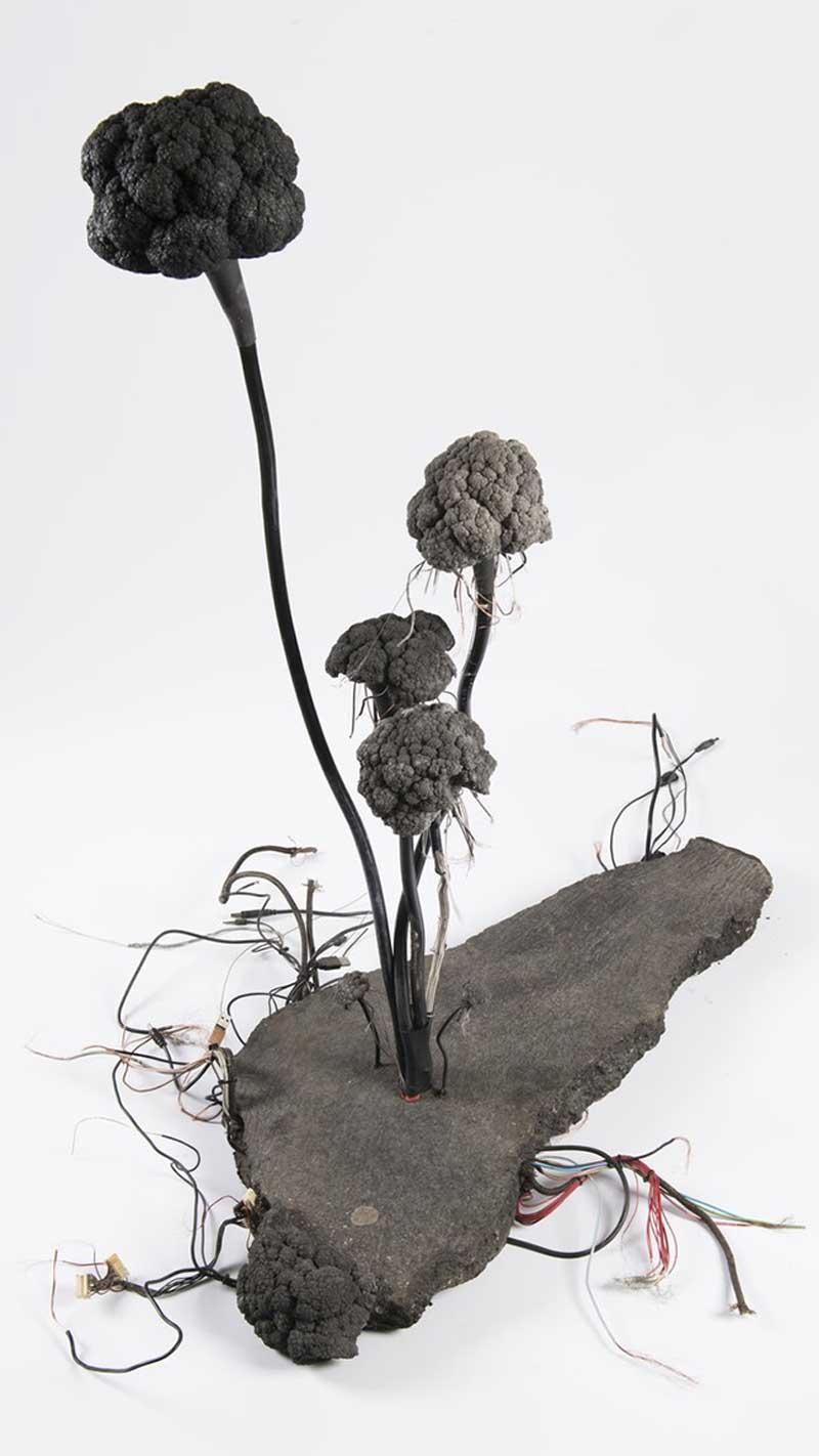 arthouse-hejtmanek-cerebrum-asphaltum-kintera