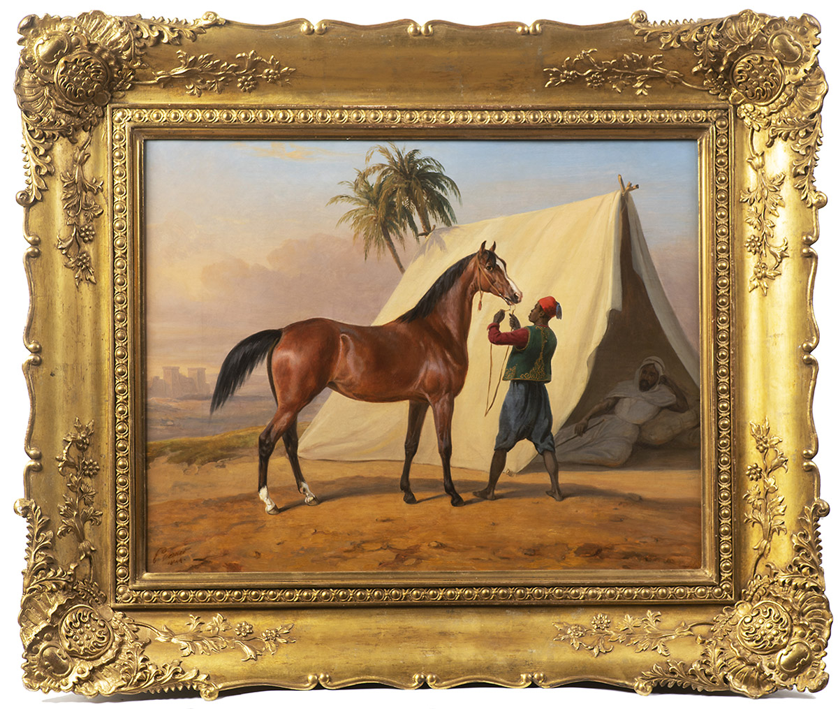 arthouse-hejtmanek-predvadeni-arabskeho-kone-vernet